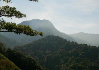 Blick auf Mount Totumas_Chiriqui_Panama Reise_Gonjoy_Erlebnisreisen
