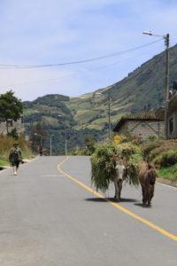 Einheimische Ecuador_Familienreise Ecuador