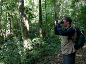 Vogelbeobachtung_Panama_Reise