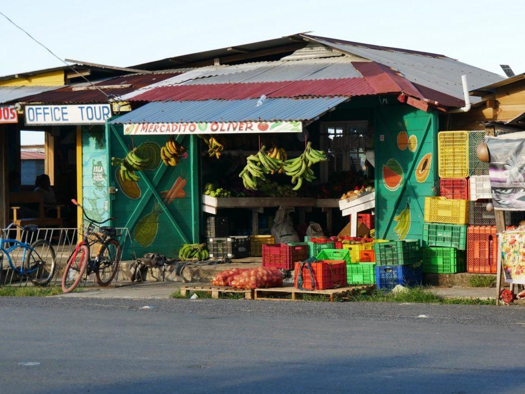Früchte Isla Colon_Panama Reise