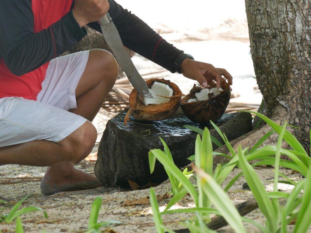 frische Kokosnuss_Panama Reise