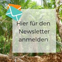 Mittelamerika und Südamerika Newsletter