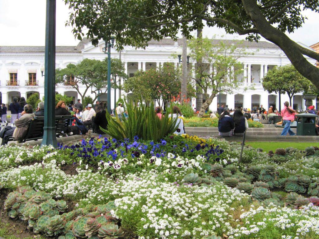 Quito Blumen Reisebericht Gonjoy