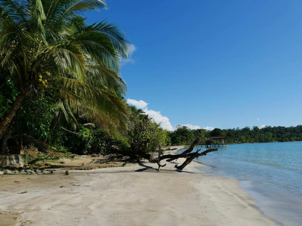 Traumstrand Bocas del Toro Panama Reise