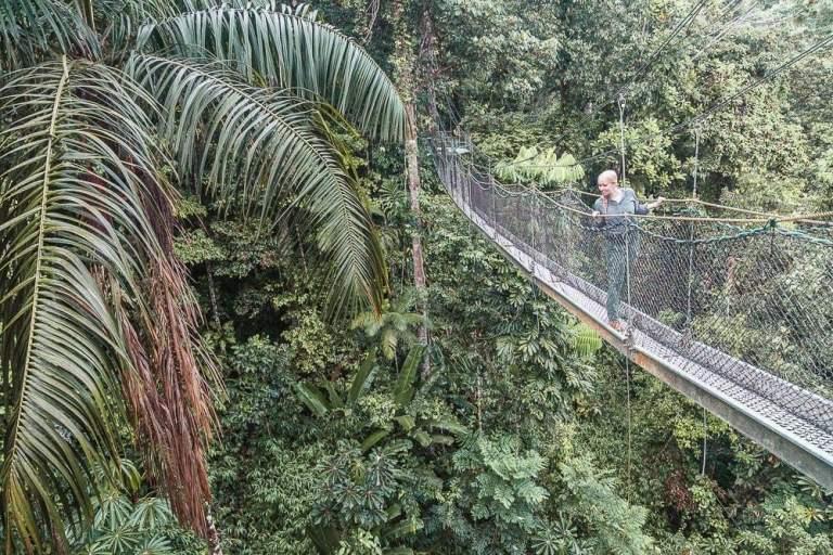 Baumwipfelpfad Guyana Reise