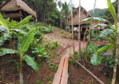 Tagesausflug Panama City Embera
