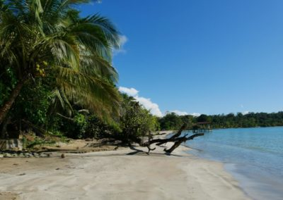 Panama Bocas del Toro Naturamerica Reisen